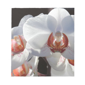 White Orchid Notepad