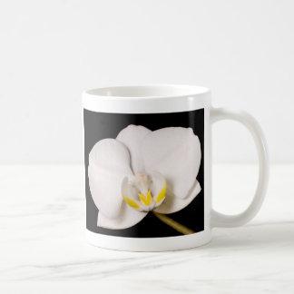 White Orchid on Black Coffee Mug