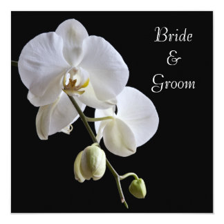 White Orchid on Black Square Wedding 13 Cm X 13 Cm Square Invitation Card