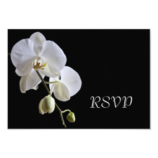 White Orchid on Black Wedding RSVP Response Card