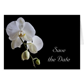 White Orchid on Black Wedding Save the Date Card