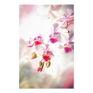 White orchid personalized stationery