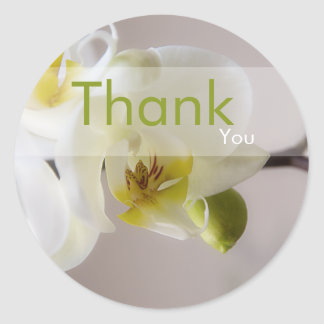 White Orchid • Thank You Sticker