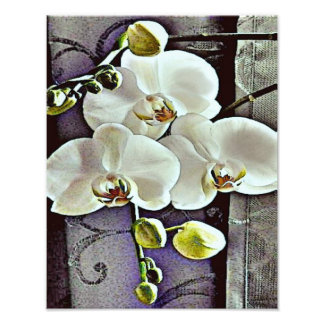 White Orchids and Denim Photo Art