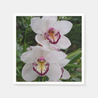 White Orchids Beautiful Tropical Flowers Disposable Napkin