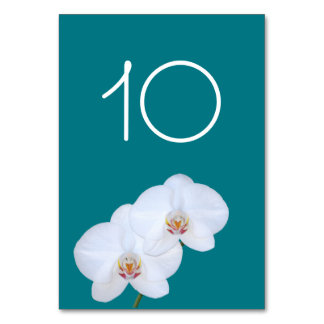 White Orchids Branch Wedding Table Number Card Table Card