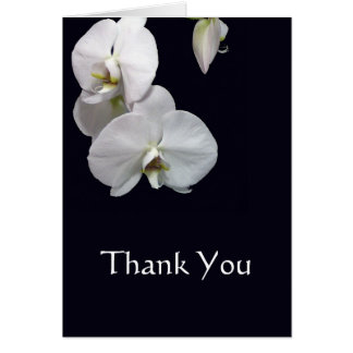 White Orchids Thank You Note Note Card