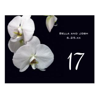 White Orchids Wedding Table Card Postca Postcard