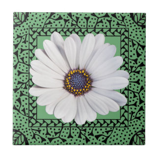 White Osteospermum (A) in Hand-drawn Frame Tile