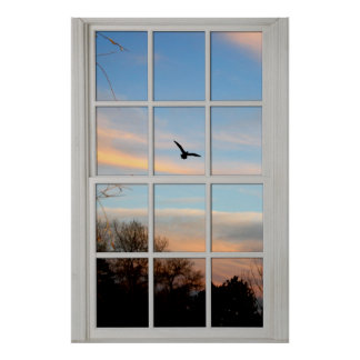 White Paned Window with a View Illusion Poster