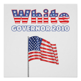 White Patriotic American Flag 2010 Elections Poster
