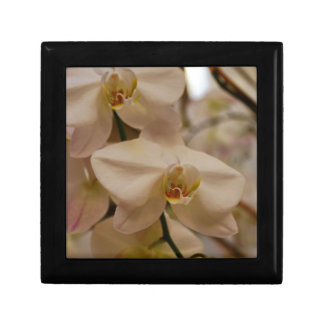 White Peabody Orchid Small Square Gift Box