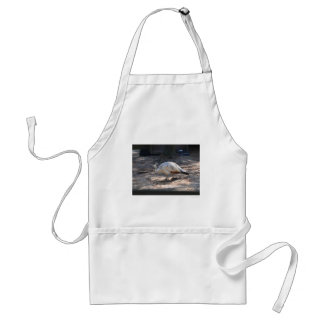 white peacock aprons