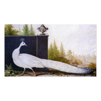 White Peacock Double-Sided Standard Business Cards (Pack Of 100)