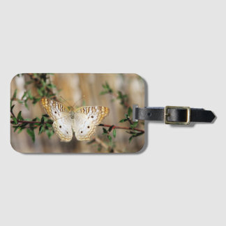 White Peacock Butterfly luggage tag