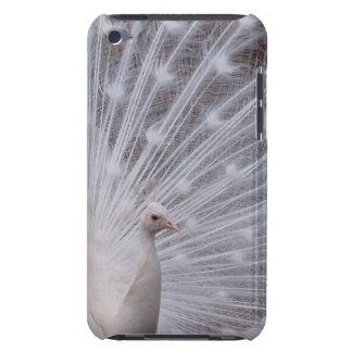 White Peacock iPod Touch Cases