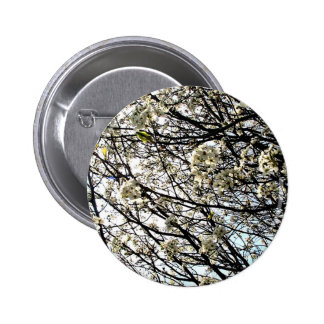 White Pear Tree Blossoms Pinback Buttons