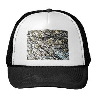 White Pear Tree Blossoms Trucker Hats