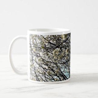 White Pear Tree Blossoms Mugs