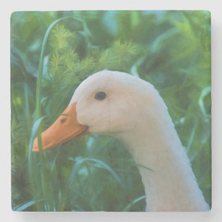 White Pekin Duck Stone Coaster