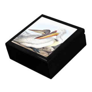 White Pelican Birds Animals Beach Gift Box
