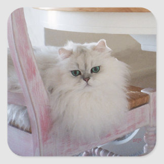 White Persian Cat on a Pink Chair Square Sticker