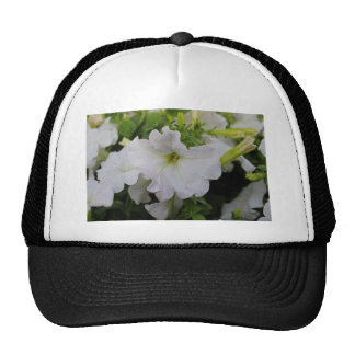 White Petunia Cap