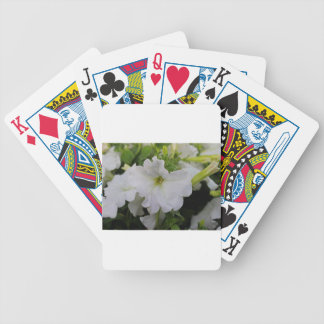 White Petunia Poker Deck