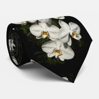 White phalaenopsis orchids tie