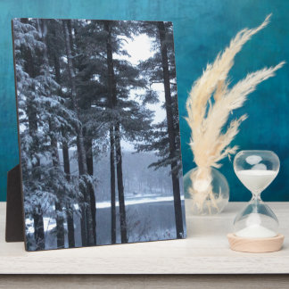 White Pines in Blue Light. --- Plaque
