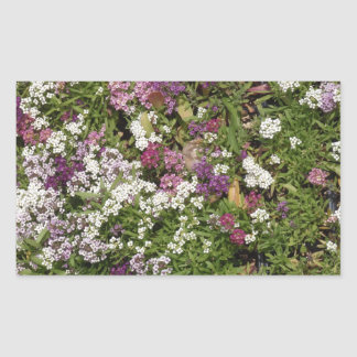 White, Pink And Mauve Flowers Rectangular Sticker