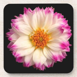 White Pink Flower Black Cork Coasters