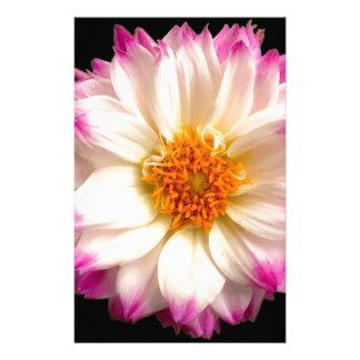 White Pink Flower Black Stationery