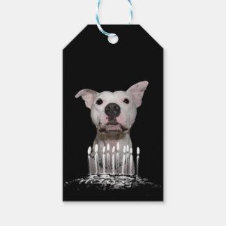 White Pitbull Birthday Gift Tags