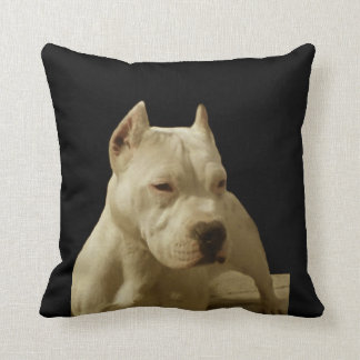 White Pitbull Terrier Cushion