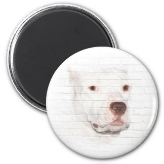 White pitbull terrier face magnet