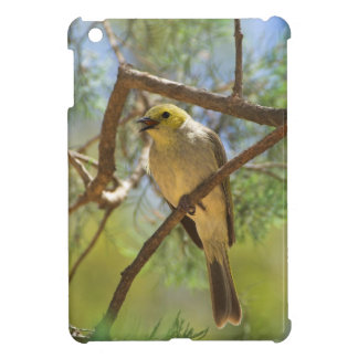 White-plumbed Honeyeater Cover For The iPad Mini