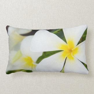 White Plumeria Flower - Frangipani Floral Template Lumbar Pillow
