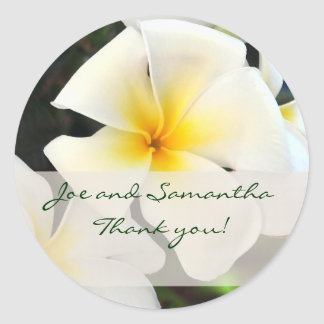 White Plumeria Flower Thank You Sticker