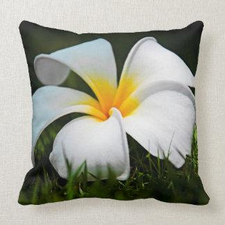 White Plumeria Frangipani Hawaii Flower Cushion