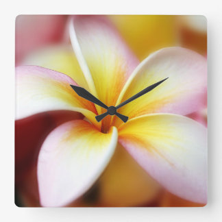 White Plumeria Frangipani Hawaii Flower Hawaiian Square Wall Clock