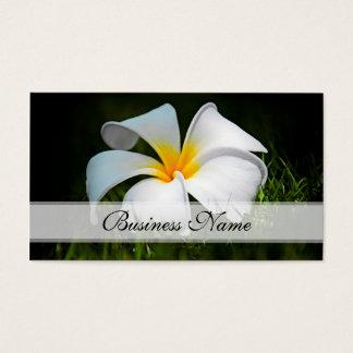 White Plumeria Frangipani Hawaii Flowers Business Card