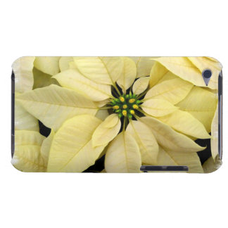 White Poinsettia iTouch Case Barely There iPod Covers