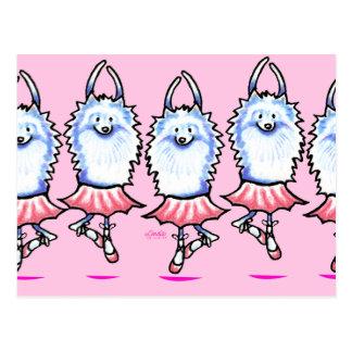 White Pomeranian Ballerina Postcard