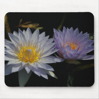 White & Purple Lotus Waterlily Mouse Pad