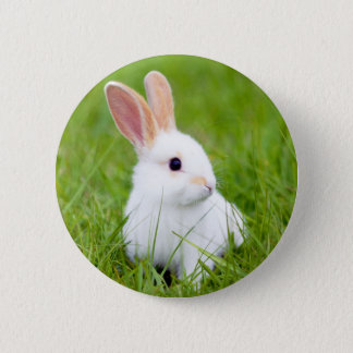 White Rabbit 6 Cm Round Badge