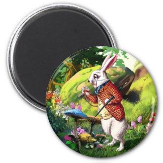 White Rabbit  Alice in Wonderland Easter Magnets