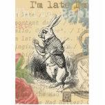 White Rabbit from Alice in Wonderland Standing Photo Sculpture
