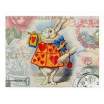White Rabbit Hearts Post Cards