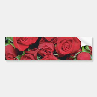 White Red sweetheart roses flowers Bumper Sticker